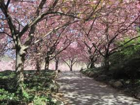 Bk Botanical Garden Greenbeat Of At The Botanic Garden