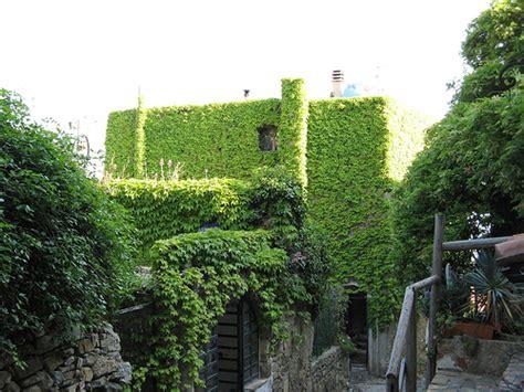imagenes azoteas verdes azoteas verdes ecotecnolog 237 as para el bienestar