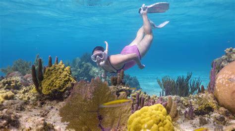 dive in resort dive anthony s key resort