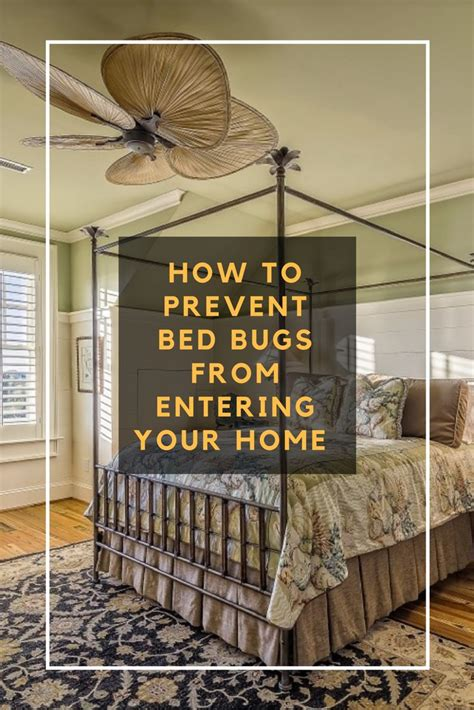 can bed bugs travel from house to house 119 best images about bed bugs on pinterest skin rash