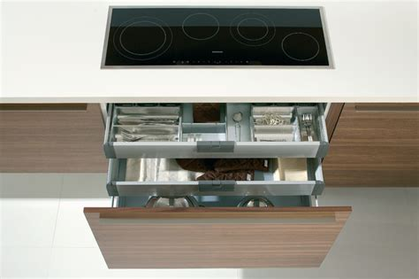 Modern Room Decor deep drawers and hidden drawers with dividers modern