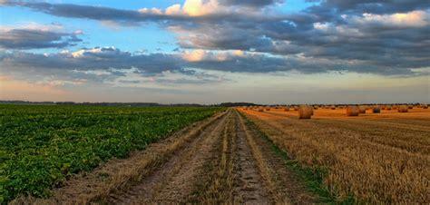 banca della terra banca della terra il database dei terreni agricoli