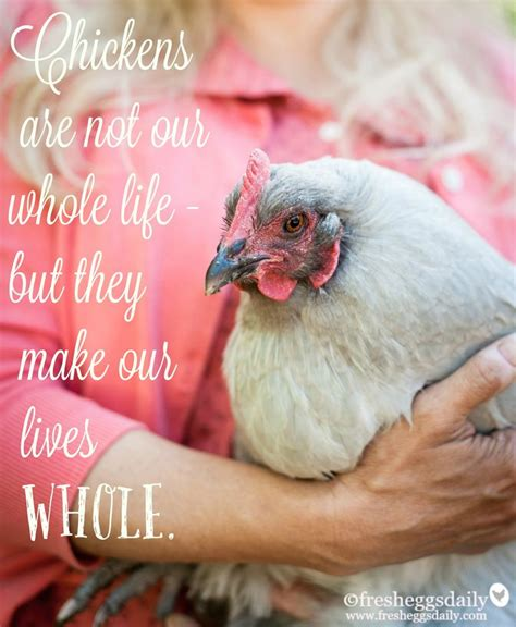 Hen Meme - 39 best images about chicken memes on pinterest the road