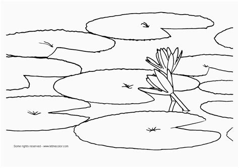 coloring pages monet s water lilies lily pad background pond pinterest