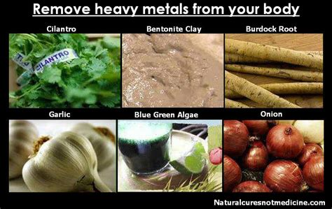 Foods That Help Detox Your Of Heavy Metals by Locals Supporting Locals Coming Soon