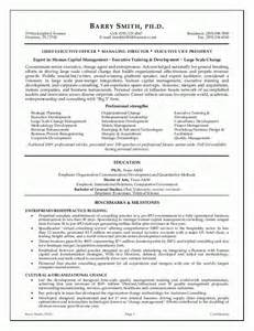 Executive Resume Sles Cfo Executive Resume Executive Resume Writing Service From