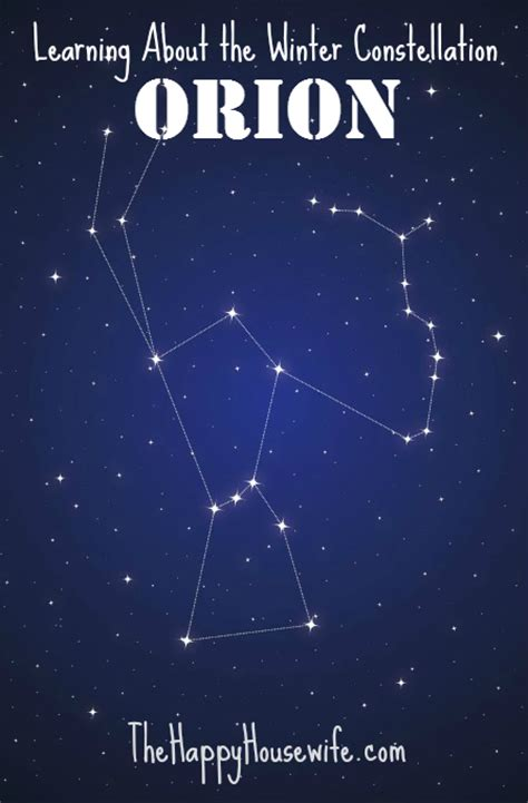the winter constellation orion the happy housewife