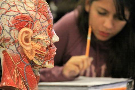 cuantos aos se estudia para ser doctor por qu 233 estudiar medicina logrosperu com