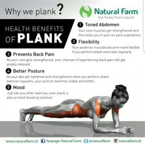 pin by robin marshall on abs plank workout fitness workout
