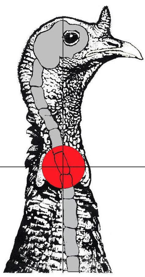 pattern your shotgun for wild turkey art lander s outdoors with the arrival of wild turkey