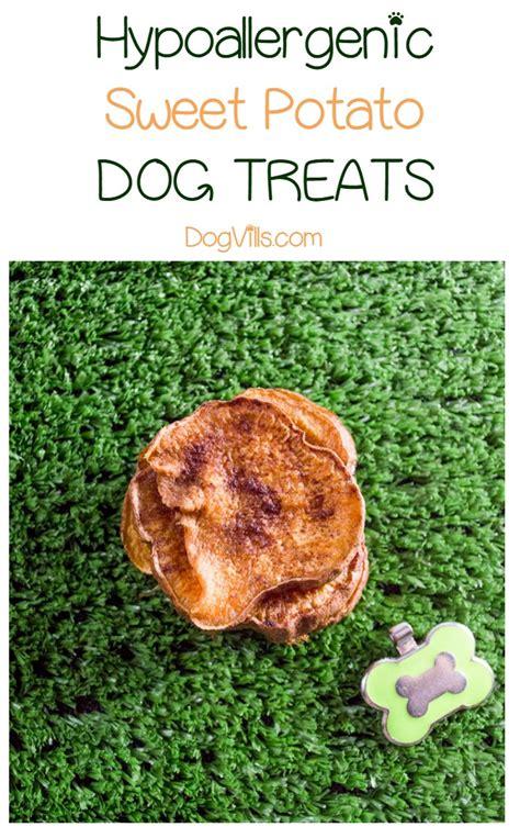 sweet potato treats hypoallergenic treat sweet potato chews