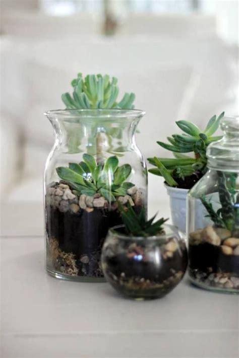 beautiful mason jar gardens youll love  home