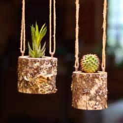 hanging planter indoors rustic hanging succulent planter log