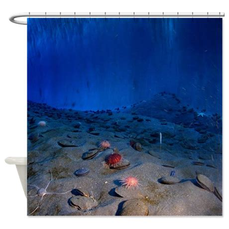 underwater shower curtain ice wall underwater shower curtain by aplusproducts