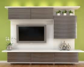 Modern entertainment center ideas pictures remodel and decor