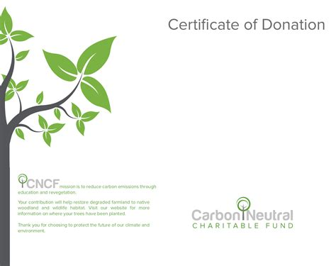 Trees For The Charity Thats Restoring The Caledonian Forest by Donate A Tree To Help Protect Australia S