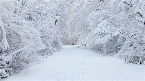 high background snow background 183 free awesome high resolution