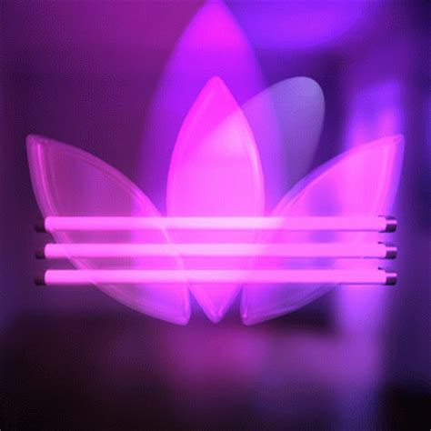 adidas animated wallpaper adidas gif find share on giphy