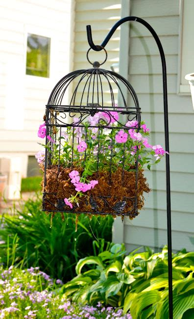 bird cage planters are fun and eye catching decor for your