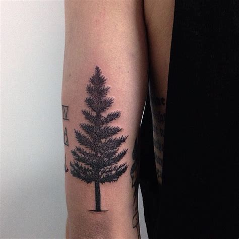 spruce tree tattoo 30 simple and easy pine tree designs for everyone
