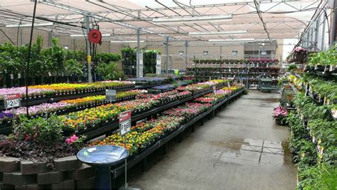 Garden Center Walmart Garden Center Hours Walmart Izvipi