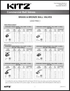 Mizu Foot Valve Cast Iron kitz valves commercial industrial