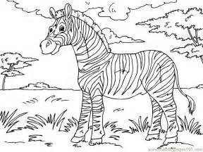 zebra color zebra coloring pages cooloring