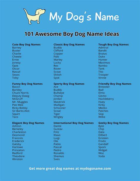 boy dog  ideas  dogs