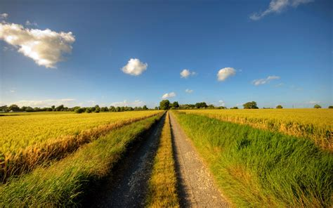 sky fields road grass trees wallpapers sky fields road