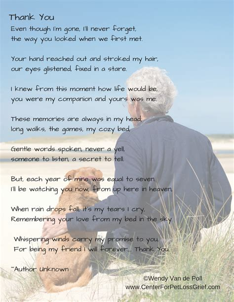 thanks friend dealing with the loss of my best friend books pet loss poems to support you center for pet loss grief
