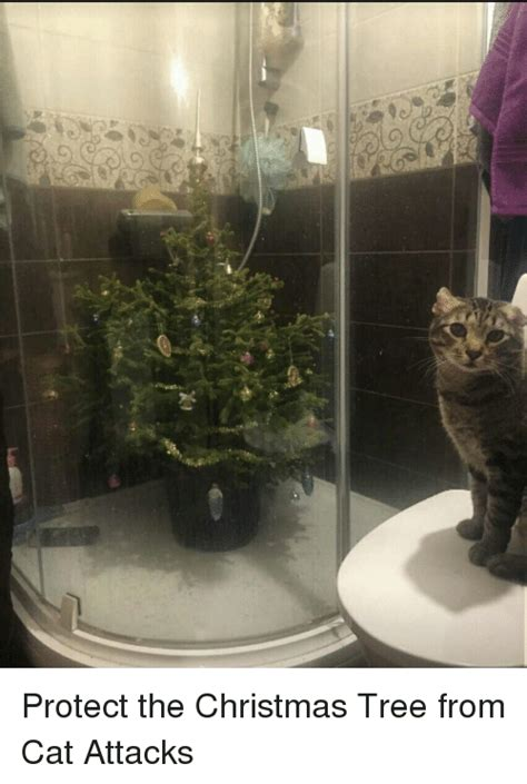 protect christmas tree from cat g x1 o protect the tree from cat attacks meme on me me