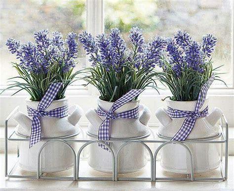 fiori lavanda oltre 25 fantastiche idee su fiori di lavanda su
