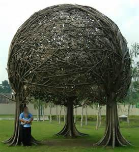 Unusual Trees For Landscaping » Home Design 2017
