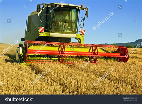 combine harvester work harvesting field wheat stock photo