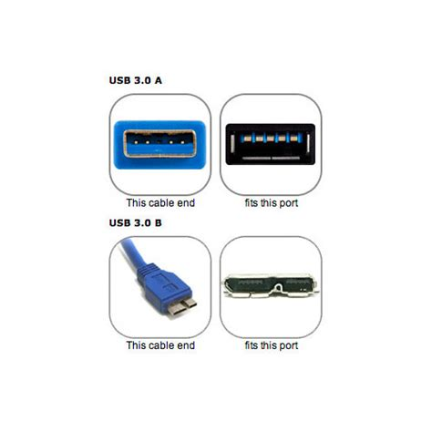 Dual A To Micro B Usb 3 0 Y Cable owc 0 5 meter 21 quot usb 3 0 micro b to dual usb 3 0 at