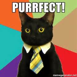Purrrfect Meme - purrfect business cat meme generator
