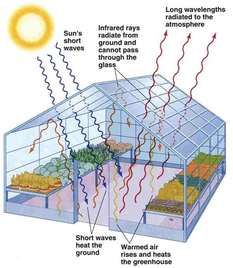 greenhouse effect diagram simple the greenhouse effect climate change
