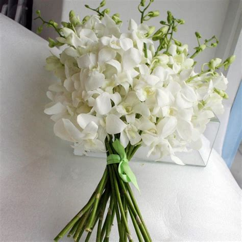 best 25 white orchid bouquet ideas on