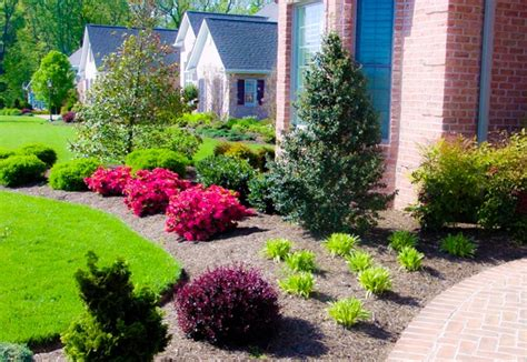 front yard garden plants 17 amazing yard landscaping for with style and