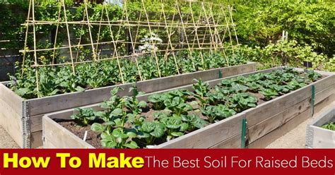 types of raised garden beds soil for raised beds how to make the best raised bed soil