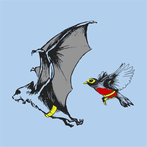 bat and robin shirtoid