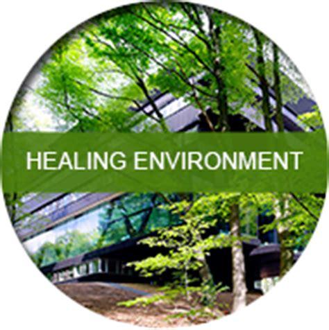design healing environment oazis onderzoek advies evidence based design gouda