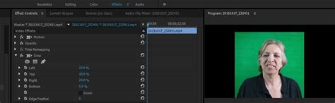adobe premiere pro how to crop video how to crop a video in adobe premiere pro 10 steps
