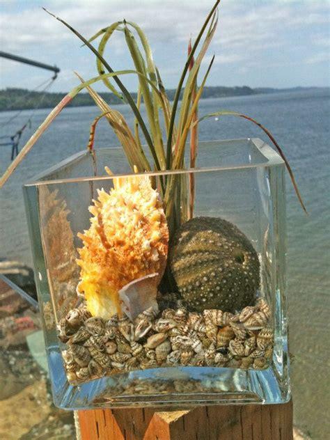 17 best images about coastal arrangements on pinterest