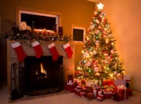 simple tips for the most majestic looking christmas tree