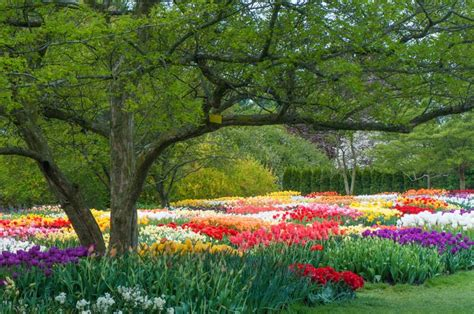 Gardens In Pennsylvania by 36 Best Images About Longwood Gardens On Amish And