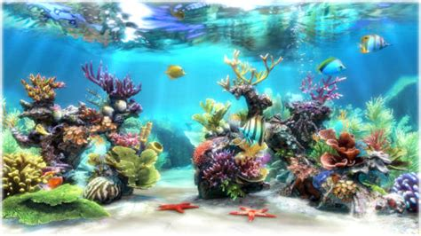 live wallpaper for pc cnet sim aquarium free download and software reviews cnet