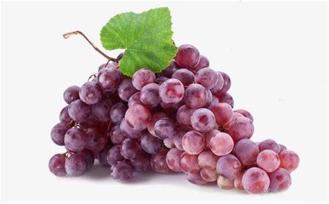 imagenes de uvas naturales grape fruit grapes purple grapes png image and clipart