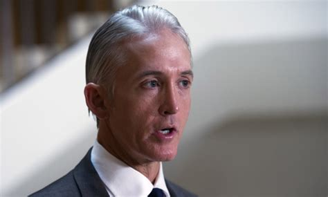 Mocked In Ad Caign by Trey Gowdys Hair Trey Gowdy S Hair Innoculous