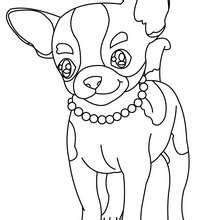 coloring pages of maltese puppies maltese dog puppy coloring pages hellokids com